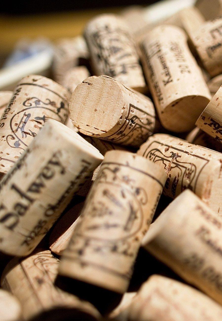 Weingut Salwey-135