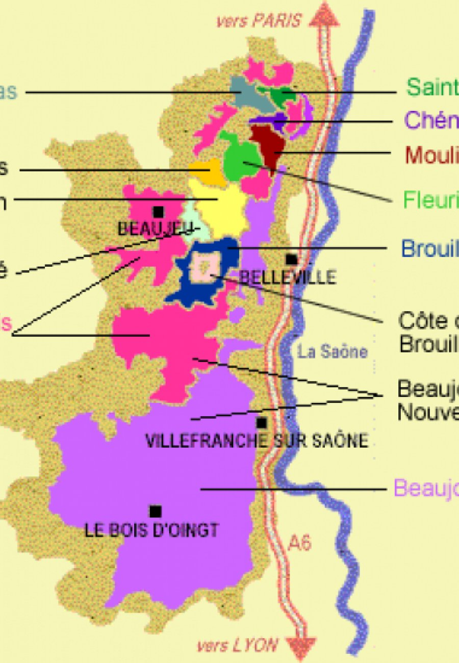 Beaujolais-15