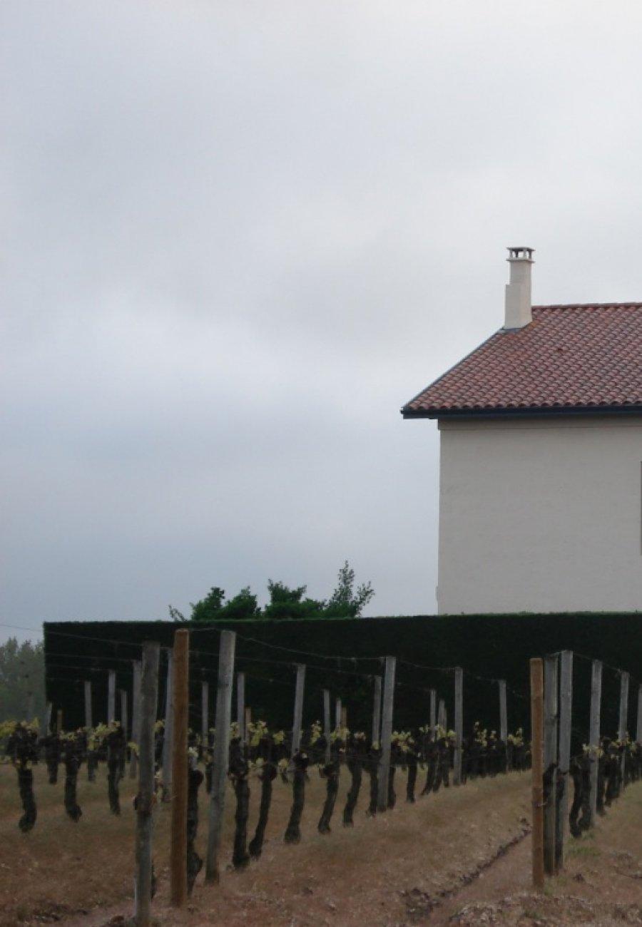 Château Lafleur-Gazin-161