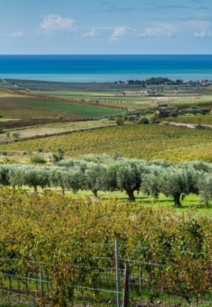 Sicilië-1645