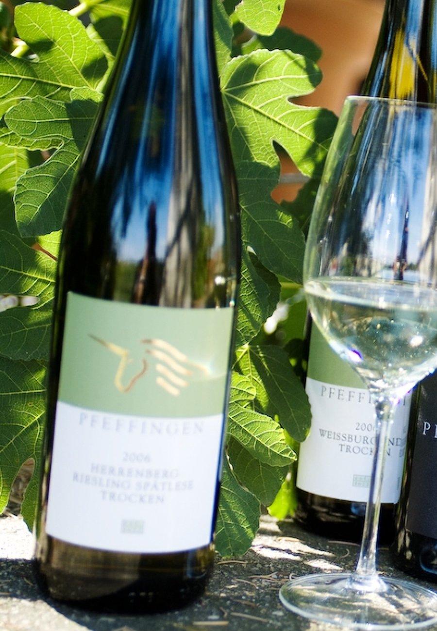 Weingut Pfeffingen-212