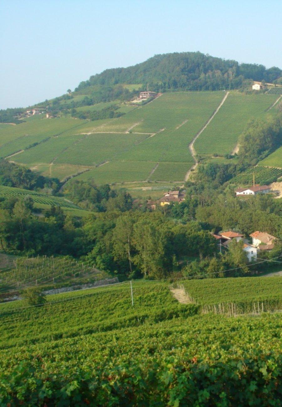 Piemonte-23