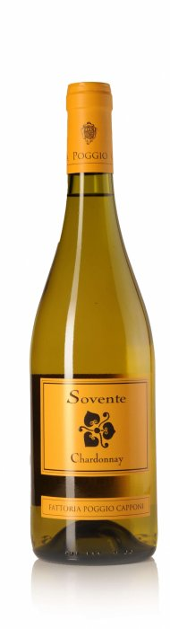 Sovente Chardonnay IGT Toscane-1186